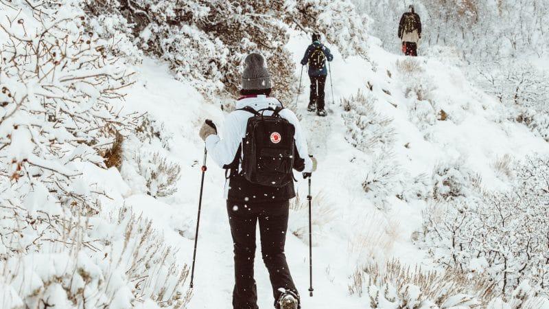 Raquette en montagne : la tenue idéale